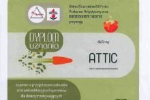 dyplom uznania wojewódzki szpital dziecięcy w Krakowie attic centrum budowlane