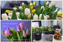 dzień kobiet tulipany centrum budowlane attic